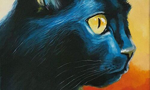 """""""CAT No.3"""""""