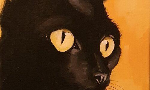 """""""CAT No.5"""""""